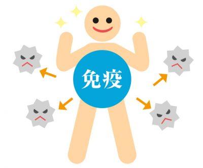 母乳と赤ちゃんの免疫